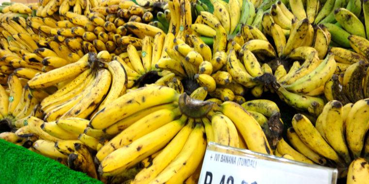 フィリピン留学 バナナ菓子